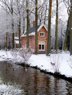 Winter Stream, Tiny House
