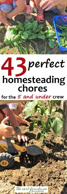 good ideas for chores that kids under 5 can handle