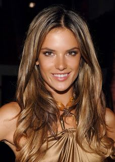 caramel honey highlights on dark hair on pinterest