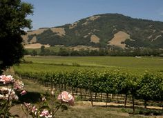 Top 10 U.S. Wine Destinations: TripAdvisor Names The Travelers' Choice....First up is Sonoma County!