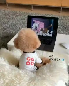 I love my cartoon Baby Animals Super Cute, Cute Baby Dogs, Cute Funny Babies, Cute Dogs And Puppies, Cute Little Animals, Doggies, Baby Animals Pictures, Cute Animal Photos, Cute Animal Videos