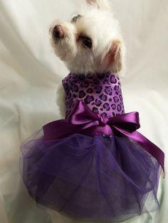 Dog Dress Purple and Black Leopard Dog Tutu by RockinDogsCoolCats Cheetah Clothes, Cute Dog Clothes, Teddy Bear Clothes, Cheetah Outfits, Dog Outfits, Pet Fashion, Animal Fashion, Dog Tutu, Leopard Dog