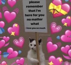 love memes My allergies are getting bad, and I cant miss any school. I ha e a choir concert Thursday, and Im going to my friends house Friday. Cute Cat Memes, Cute Love Memes, Pretty Meme, Crush Memes, Love You Meme, Love Memes For Him, Flirty Memes, Response Memes, Heart Meme
