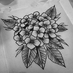 Image result for traditional american style tattoo hydrangea flower frame