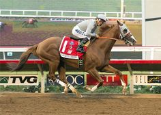California-Chrome-a3-360