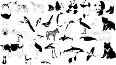 Black and white animals for tattoo inspiration