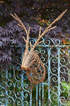 deer head wicker | Pinned by Ruth Hyde