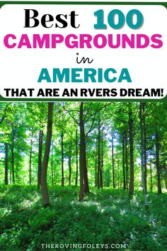 Want to know the top ranked campgrounds in America? We have compild a list of the best campsites to help your plan your RV travel destinations. We include Texas rv parks, rv campgrounds in Michigan, Utah, California, Florida and many more. Finding campgrounds to stay at can be the hardest part of RV travel, but this list will help you to easily plan your next camping vacation. #rvtraveldestinations #rvcampgrounds #rvtripplanning #florida Rv Travel, Travel Trailers, Travel Destinations, Texas Rv Parks, Best Places To Camp, Rv Campgrounds, Campsite, Utah, Michigan