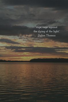 """rage, rage against  the dying of the light."" Dylan Thomas"