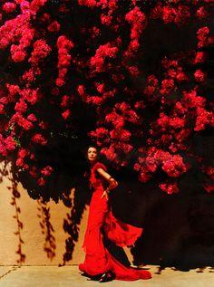 beautiful photograph by Mario Testino  Liz Johnson via chloé douglas  Repinned 4 weeks ago from photography