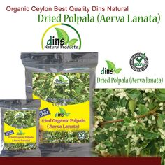 Natural Organic Polpala Dried Herbal loose Tea (Aerva Lanata) Seal Pack | Health & Beauty, Vitamins & Dietary Supplements, Herbs & Botanicals | eBay!