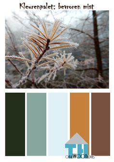 kleurenpalet bevroren mist