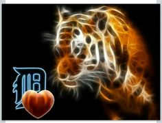 All heart for the Tigers!!