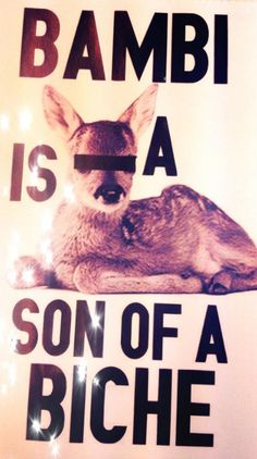BAMBI IS A SON OF A BICHE !