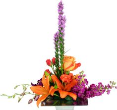 Naturals - floral design - liatras - roses - lily - stock - orange purple Simple Flower Design, Modern Floral Design, Floral Designs, Contemporary Design, Tropical Flower Arrangements, Tropical Flowers, Small Flowers, Beautiful Flowers, Small Centerpieces