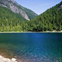 New Wilderness on The Olympic Peninsula? - Congressman Norm Dicks (D-WA) and Senator Patty Murray (D-WA) introduced new legislation that sets out to permanently protect more than 126,500 acres of Olympic National Forest wilderness and 19 rivers and their major tributaries (464 river miles in all) as Wild and Scenic Rivers.