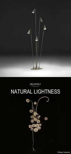 NATURAL LIGHTNESS: Lightweight natural elements, gossamer, that by defying gravity are subtly integrated within the landscape, becoming part of it. Discover Delicately, a new design concept by Vibia. http://landing.vibia.com/be-inspired/delicately?utm_source=social&utm_medium=pinterest&utm_campaign=delicately_eu&utm_content=pint_design_conceptsutm_term=