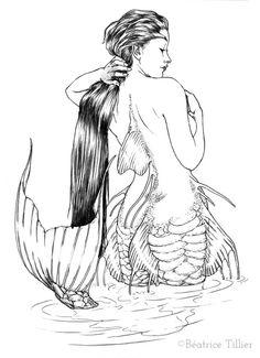 Mermaid Carp • Sirène Carpe