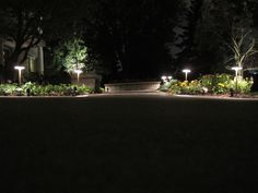 Add Landscape Lighting To Illuminate Your Walkway And Plant Life!