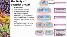 Chapter 06 Microbial Nutrition and Growth - Cowan - Dr. Mark Jolley