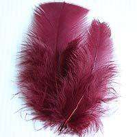 Lot de 30 Plumes de Décoration rouge bordeaux. Sublimes et toutes douces, parfaites pour décorer votre mariage.