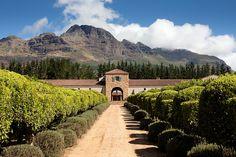 Waterford Estate, Stellenbosch