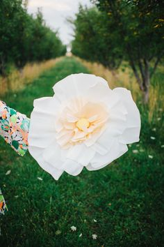 Giant paper flower DIY