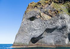 This basalt sea-cliff on the island of Heimaey in Southern Iceland looks just like a giant elephant or wooly mammoth dipping its trunk into the sea.