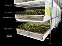 World's largest vertical farm grows without soil, sunlight or water in Newark #verticalfarming
