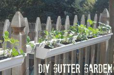 10 Rain Gutter Garden Ideas To Spruce Up Your Garden | Deck Ideas |  Pinterest | Gutter Garden, Decking And Gardens
