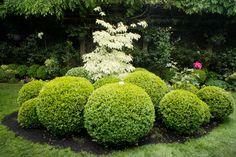 Gamble Garden Spring Tour 2014: Webster traditional landscape
