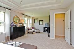 Dresser with mirror, and accented trey ceilings