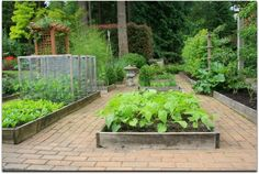 Spice Up Your Garden With These Helpful Tips!