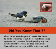 read please ! YOU CAN MAKE THE DIFFERENCE .................................