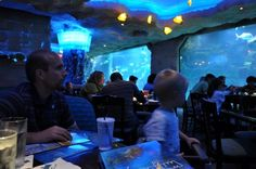 Aquarium Restaurant Downtown Houston