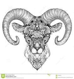 mountain-sheep-argali-black-white-ink-drawing-stylized-image-47383678.jpg (1300×1390)
