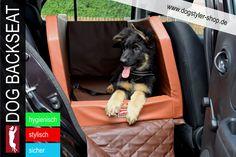 Schmutzdecke Rücksitzbank Hunde Schutz Sitze Rücksitz Sitze hinten Schutz
