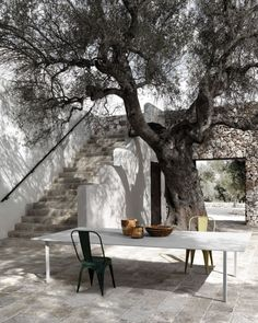 Fabulous outdoor dining space