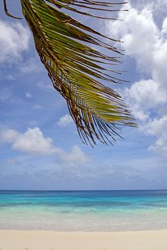 Mahe, Seychelles: Four Seasons Resort
