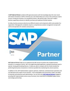 Sap mobility solutions consultant