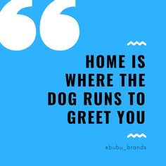 Bubu Brands Dog Quote: Home is where the dog runs to greet you Treat Quotes, Natural Dog Treats, Dog Runs, Dog Memes, Dog Quotes, Welsh, Dog Food Recipes, Your Pet, Ali