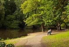 Peaceful Hiltingbury Lake at Chandlers Ford in Hampshire