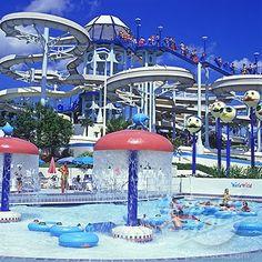 Wet N' Wild water park...Arlington TX: Favorite Places, Park Arlington ...