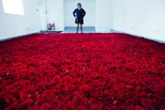 'Red on Green' will see the decay and destruction of 10,000 red roses laid in a field upon the gallery floor.