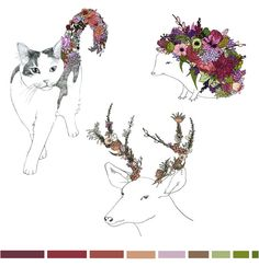 Katie Vernon is an illustrator and florist, and I love how her illustrations are influenced by her work as a florist.