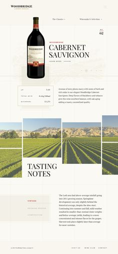 Great website about wine and other things. Awesome execution