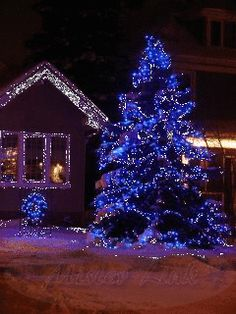 Tree and House with Flashing Outdoor Christmas Lights . Christmas Light Displays, Christmas House Lights, Blue Christmas, Outdoor Christmas, Christmas Wishes, Christmas Greetings, Beautiful Christmas, Winter Christmas, Christmas Holidays