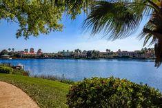 Free Disney World Crowd Calendars, Ride Reviews, Resort Reviews, Restaurant Reviews, and More