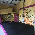 Panda Monium Room  @cruxcc in Austin #climbinggymreviews