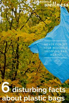 Six disturbing facts about plastic bags.   Rodale Wellness